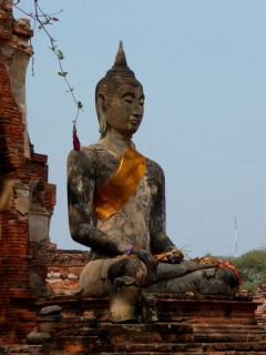 ayutthaya-buddha1
